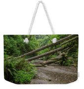 Entrance To Fern Canyon Weekender Tote Bag