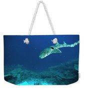Epaulette Shark Hemiscyllium Ocellatum Weekender Tote Bag