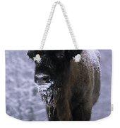 European Bison Bison Bonasus In Snow Weekender Tote Bag