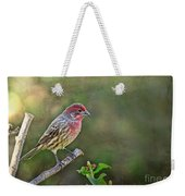 Evening Finch Blank Greeting Card Weekender Tote Bag