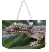 Extreme Close-up Of A Gecko In The Rain Weekender Tote Bag
