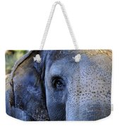 Eye Of The Elephant Weekender Tote Bag