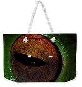 Eye Of The Frog Weekender Tote Bag