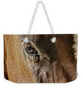 Eye Of The Horse Weekender Tote Bag