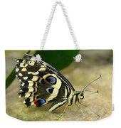 Eye To Eye With A Butterfly Weekender Tote Bag