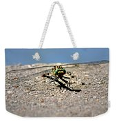 Eye To Eye With A Dragonfly Weekender Tote Bag
