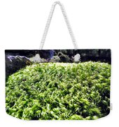 Fairie Watches Over  Weekender Tote Bag