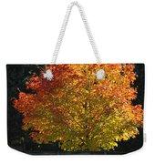Fall Colored Tree Weekender Tote Bag