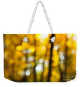 Fall Forest In Sunshine Weekender Tote Bag by Elena Elisseeva