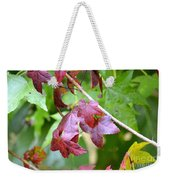 Fall Has Begun Weekender Tote Bag