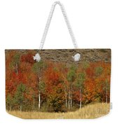 Fall In Snake River Canyon Weekender Tote Bag