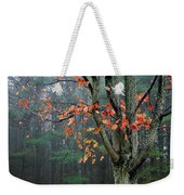 Fall In Your Face Weekender Tote Bag