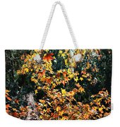 Fall Leaves Over Florida Pond Weekender Tote Bag