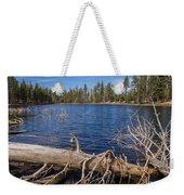 Fall Logs On Reflection Lake Weekender Tote Bag