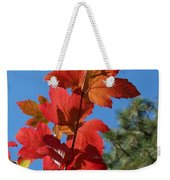 Fall Snowball Branch Weekender Tote Bag