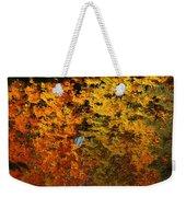 Fall Textures In Water Weekender Tote Bag by LeeAnn McLaneGoetz McLaneGoetzStudioLLCcom