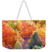 Fall Trees 3 Weekender Tote Bag