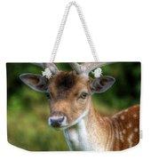 Fallow Deer Weekender Tote Bag