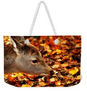 Fawn In Autumn Weekender Tote Bag
