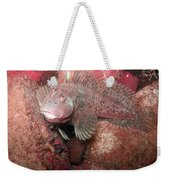 Feather Blenny Female Weekender Tote Bag