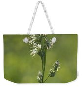 Feathery Reed Canary Grass Vignette Weekender Tote Bag
