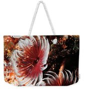 Feeding Feather Dusters Weekender Tote Bag