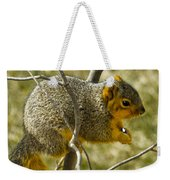 Feeding Tree Squirrel Weekender Tote Bag