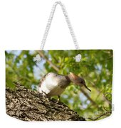 Female Hooded Merganser Weekender Tote Bag