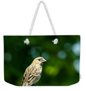 Female House Finch Perched Weekender Tote Bag