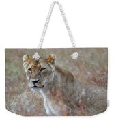 Female Lion Portrait Weekender Tote Bag