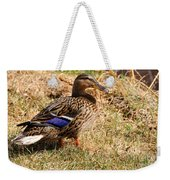 Female Mallard On A River Bank In Alaska Weekender Tote Bag