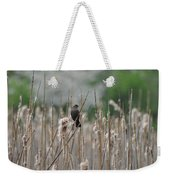 Female Redwinged Blackbird Weekender Tote Bag