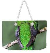 Female Resplendent Quetzal - Dp Weekender Tote Bag
