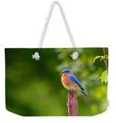 Fence Post Bluebird Weekender Tote Bag