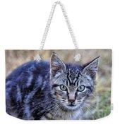 Feral Kitten Weekender Tote Bag
