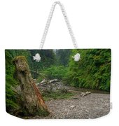 Fern Canyon Trunk Weekender Tote Bag