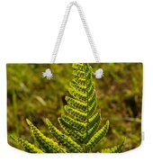 Fern Frond And Sporangia 1 Weekender Tote Bag