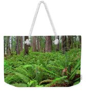 Ferns And Redwoods Weekender Tote Bag