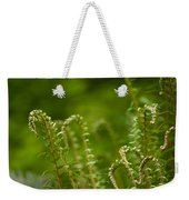 Ferns Fiddleheads Weekender Tote Bag