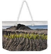 Ferns Growing From A Crack In The Lava Weekender Tote Bag