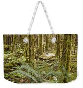 Ferns Sit On The Forest Floor Weekender Tote Bag
