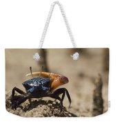 Fiddler Crab Living In A Sandy Tidal Weekender Tote Bag