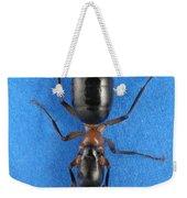 Field Ant Weekender Tote Bag
