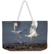 Fighting Gulls Weekender Tote Bag
