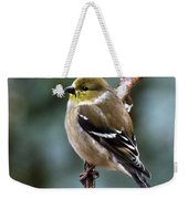 Finch In An Ice Storm Weekender Tote Bag