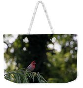 Finch In The Willow Weekender Tote Bag