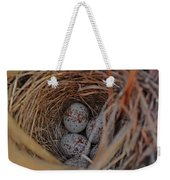 Finch Nest With Eggs  Weekender Tote Bag