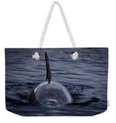 Fins Up Weekender Tote Bag