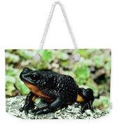 Fire-bellied Frog Atelopus Ignescens Weekender Tote Bag