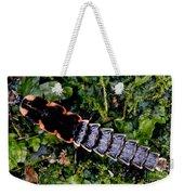 Firefly Larva Weekender Tote Bag
